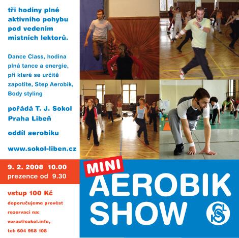 mini Aerobik Show 2008